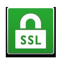 ssl-icono-verde